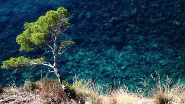 mediterranean sea - sardinia stock videos & royalty-free footage