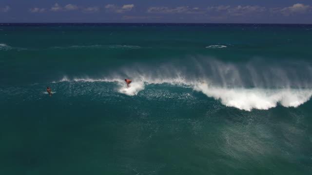 medium aerial shot of surfer dropping into wave and riding it - タートル湾点の映像素材/bロール