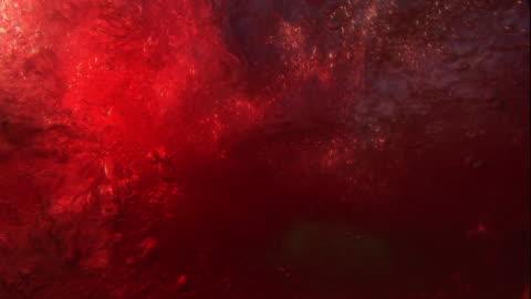 vídeos y material grabado en eventos de stock de medium close up hand-held - blood drifts through a roiling ocean. - blood