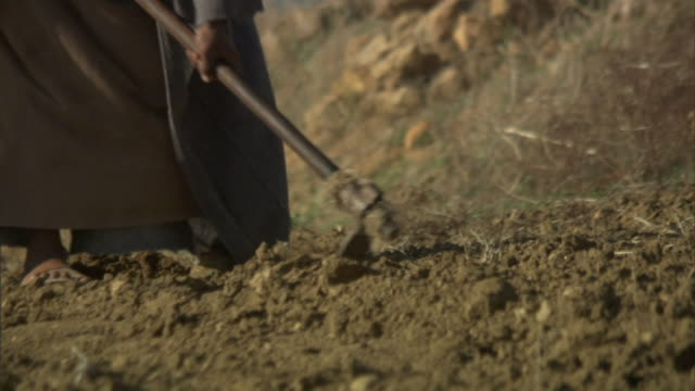 medium close up pan-right - a woman uses a hoe and digs through the soil. / tunisia - dürre stock-videos und b-roll-filmmaterial
