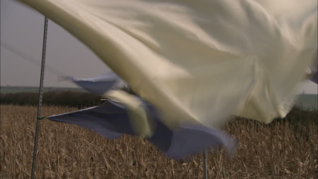 Medium Close Up static - A powerful wind pulls a sheet off a clothesline near a cornfield