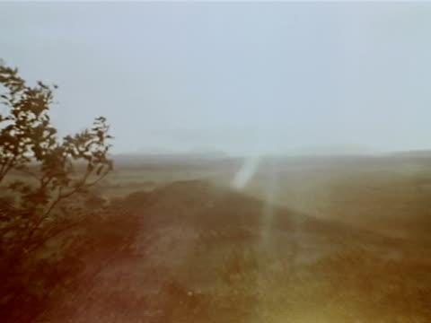 medium close up - bare tree stock-videos und b-roll-filmmaterial