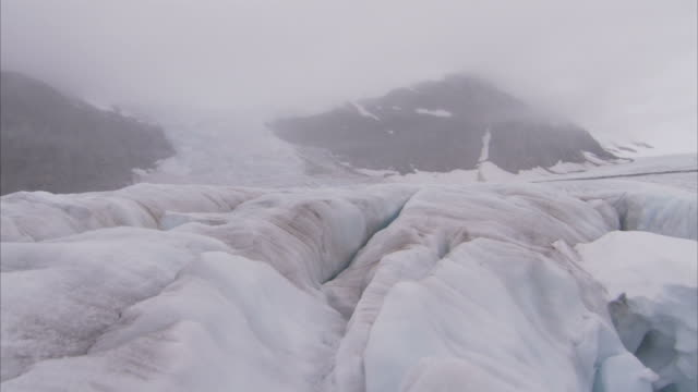 """Medium crane-Fog settles over crevasses on the Juneau Ice Fields. / Alaska, USA"""