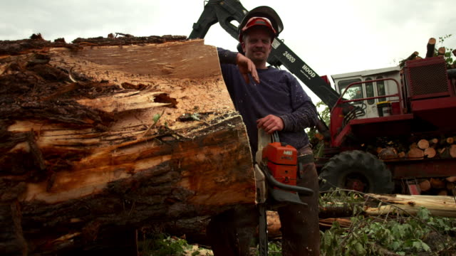 medium full shot. portrait of man in hard hat leaning up against a log, looking into the camera. - vermont stock videos & royalty-free footage