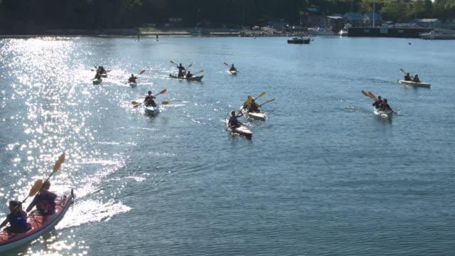 medium group of people kayaking - hobbies stock videos & royalty-free footage