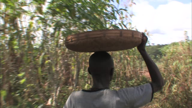 medium hand-held push-in - a farmer balances a shallow bowl on his head as he walks through crops. / mozambique - mozambique stock videos & royalty-free footage