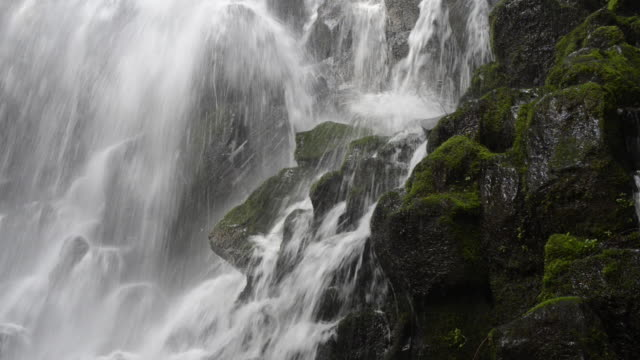 Medium lockdown shot of water flowing through mossy rocks at Mt. Hood National forest
