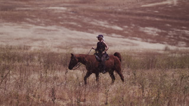 medium long lens shot, camera pans with karen riding horse in pastures - attività equestre ricreativa video stock e b–roll