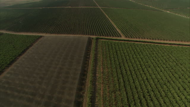 vidéos et rushes de medium long shot aerial tracking-right - acres of farmland create a patchwork landscape across the israeli countryside. / israel - patchwork landscape