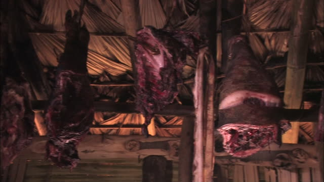 medium long shot pan-right - shanks of meat hang from the rafters of a hut. / india - drying stock videos & royalty-free footage