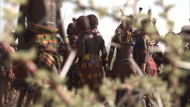 medium long shot rack-focus - natives dance while holding instruments near a thorn bush. / ethiopia - indigenous culture stock videos & royalty-free footage