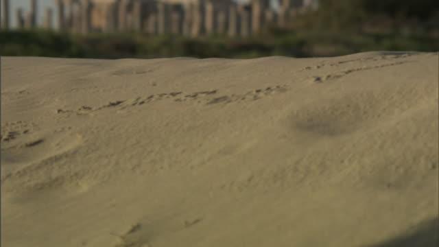 Medium Long Shot rack-focus tilt-up - Sand dunes surround the ruins of Leptis Magna in Libya. / Khoms, Libya