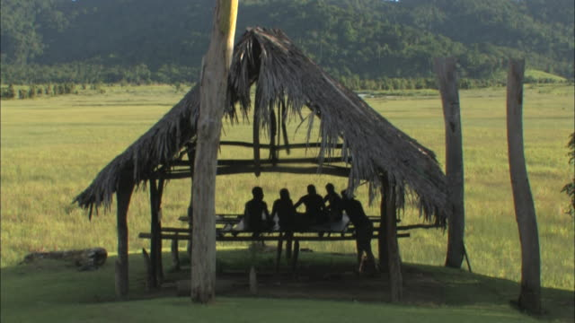 medium long shot static - native new guinea men sit under a hut with a thatched roof. / papua new guinea - thatched roof stock videos & royalty-free footage