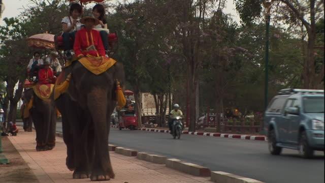 vídeos de stock, filmes e b-roll de medium long shot static - tourists ride elephants in thailand. / thailand - animal de trabalho