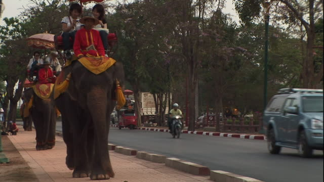 stockvideo's en b-roll-footage met medium long shot static - tourists ride elephants in thailand. / thailand - vier dieren