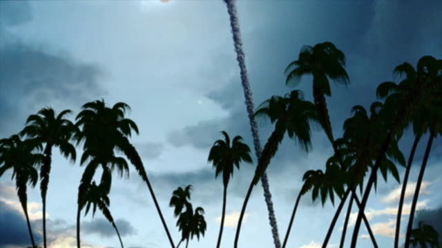 Medium Long Shot tilt-down - A meteor impact blasts palm trees in a computer-generated animation. / Washington, D.C., USA