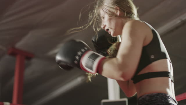 medium low angle panning shot of female boxers fighting / lehi, utah, united states - ring stock videos and b-roll footage