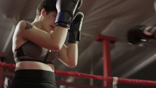 medium low angle panning shot of female boxers fighting / lehi, utah, united states - lehi stock videos & royalty-free footage