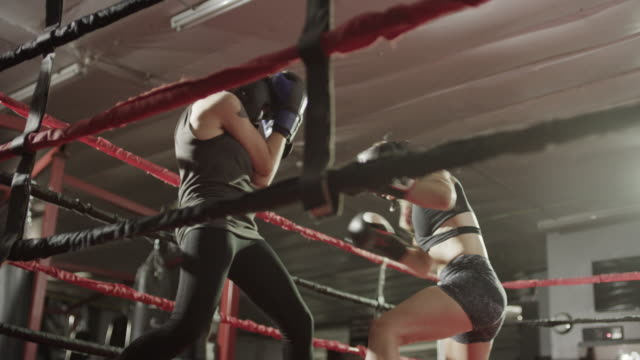 Medium low angle shot of female boxers sparring / Lehi, Utah, United States
