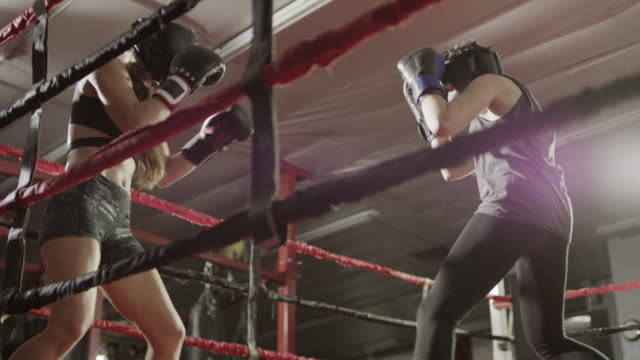 medium low angle shot of female boxers sparring / lehi, utah, united states - aggression点の映像素材/bロール