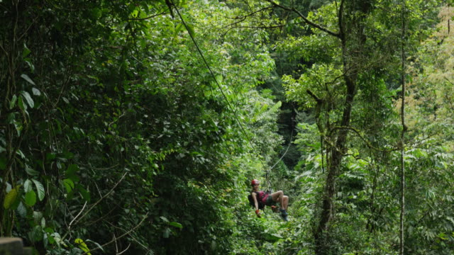 medium low angle tracking shot of woman ziplining to landing in forest / quepos, puntarenas, costa rica - ロープスライダー点の映像素材/bロール