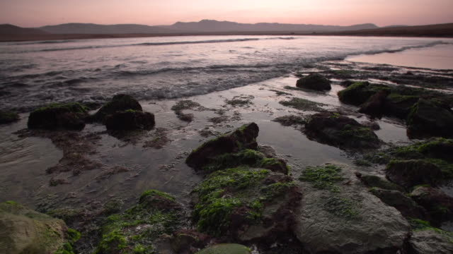 Medium pan of tide water flooding over mossy rocks at sunset