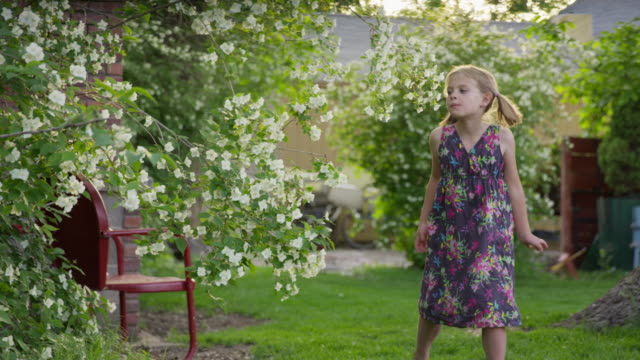 medium panning shot of girl skipping in yard picking flower petals / springville, utah, united states - springville utah stock-videos und b-roll-filmmaterial