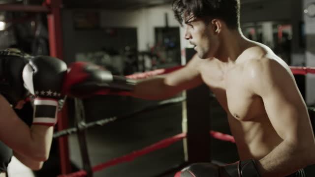 medium panning shot of male and female boxers sparring / lehi, utah, united states - lehi video stock e b–roll
