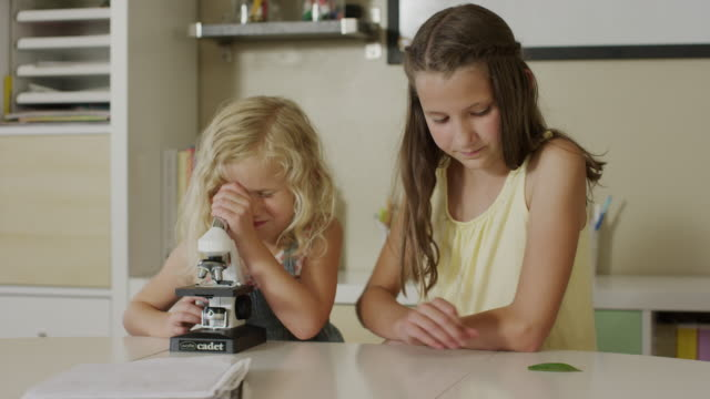 medium panning shot of of girls examining specimen with microscope / orem, utah, united states - orem utah stock videos & royalty-free footage