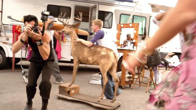 Medium shot actress walking past photographers / posing while holding dog and walking into trailer