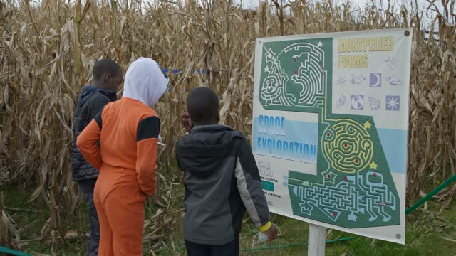 medium shot african american children looking at map of cornfield maze on halloween - leisure games stock videos & royalty-free footage