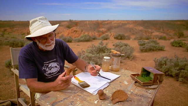 medium shot archeologist working with bone at folding table in desert - geologist stock videos & royalty-free footage