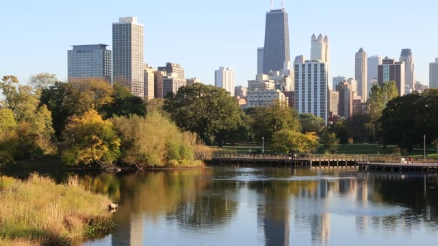 Medium Shot Chicago Skyline from Lincoln Park Zoo