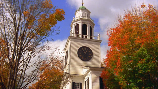 Medium shot clock tower and branches of trees in Autumn / New England