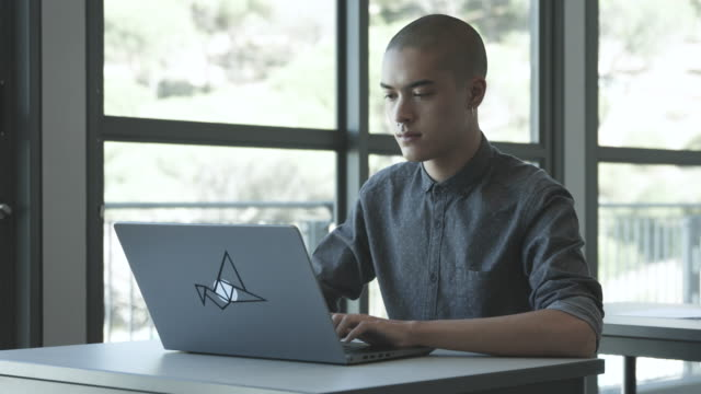medium shot, college student uses laptop - 20 24 years stock videos & royalty-free footage