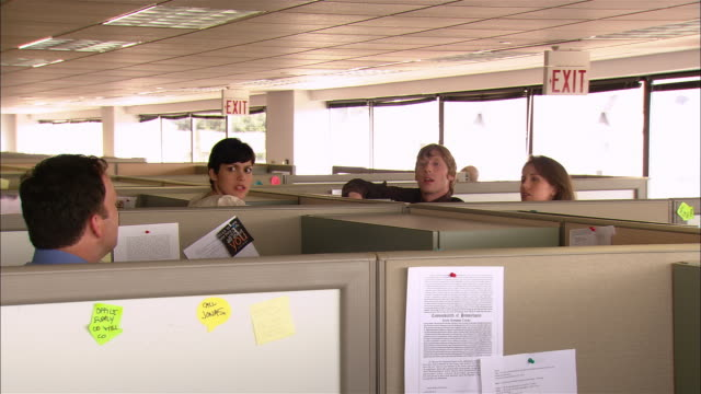 Medium shot co-workers having conversation over the tops of their cubicles / group talking to a fourth person