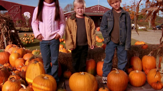 vídeos y material grabado en eventos de stock de medium shot crane shot girl and two boys standing in back of wagon surrounded by pumpkins looking at cam - mujer con grupo de hombres