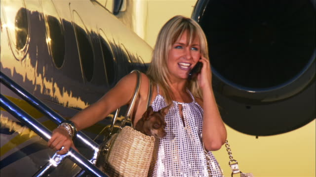 medium shot diva carrying chihuahua in purse and talking on cell phone on steps of private airplane / long beach, california, usa - pampered dog stock videos and b-roll footage
