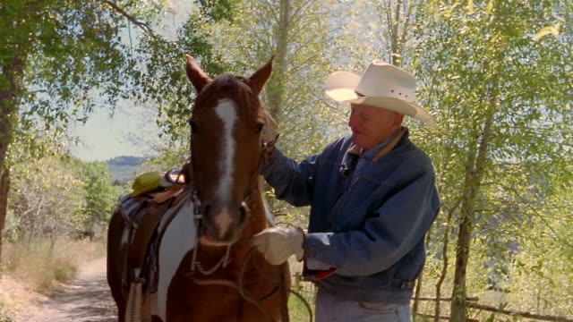 medium shot elderly man in cowboy hat holding paint horse by reins / petting horse / new castle, co - paint horse stock videos & royalty-free footage
