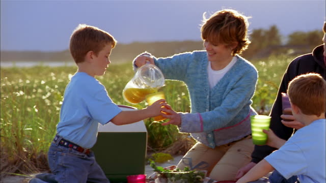 Medium shot family having picnic at beach / mother pouring juice for twin boys