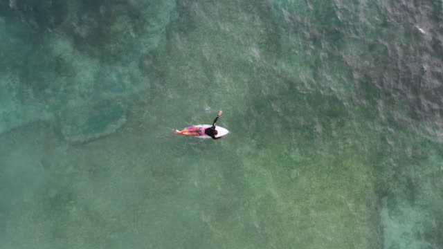 medium shot from directly above of a mature woman on a surfboard paddling in the ocean - leisure activity stock videos & royalty-free footage
