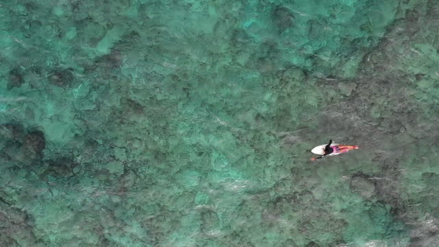 medium shot from directly above of a mature woman on a surfboard paddling in the ocean - okinawa prefecture stock videos & royalty-free footage