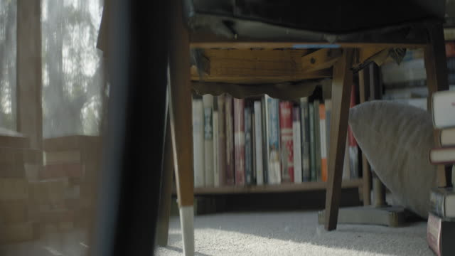 medium shot from under table of books arranged on shelf - shelf stock videos & royalty-free footage