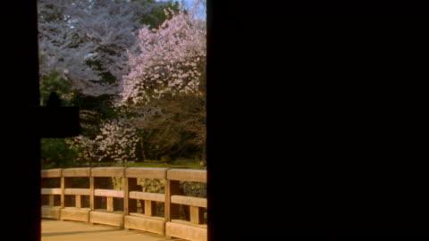 vidéos et rushes de medium shot gate opening to reveal bridge with cherry blossom tree in background / hikone, japan - porte structure créée par l'homme