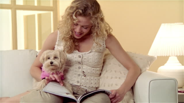 vídeos de stock, filmes e b-roll de medium shot girl sitting on sofa, looking at magazine with maltese-toy poodle mix on her lap - poodle de brinquedo
