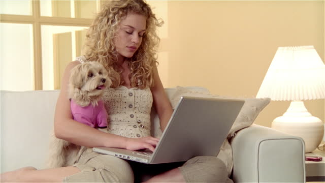 medium shot girl sitting on sofa, using laptop with maltese-toy poodle mix on her lap - nur weibliche teenager stock-videos und b-roll-filmmaterial