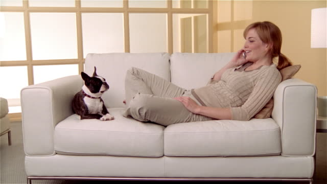 Medium shot girl sitting on sofa with Boston Terrier, talking on cell phone