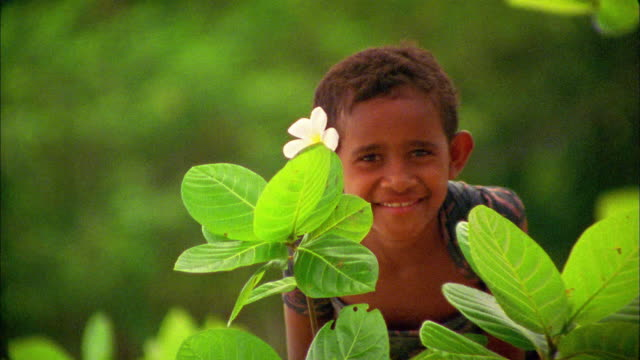 medium shot girl with flower behind ear, kneeling behind plants and smiling / fiji - fiji stock videos & royalty-free footage