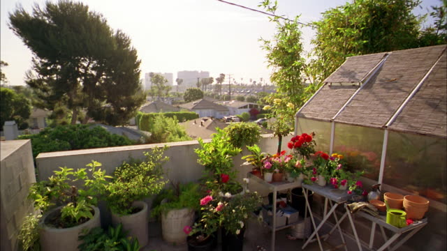 medium shot greenhouse terrace w/flowers and plants on tables - terrasse grundstück stock-videos und b-roll-filmmaterial