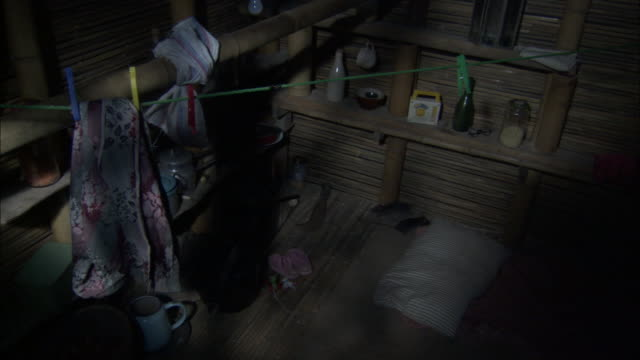 Medium Shot High Angle - Rats scamper about floor; laundry and other household items visible / Bangladesh